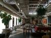 Restaurant Interior Trees