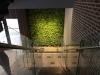 Apartment complex interior green wall