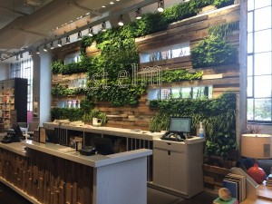 living wall installed in store