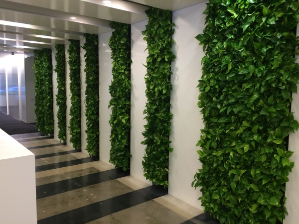 Take A Look At Our Work Online And Call Foliage Design Systems Of Atlanta Today 770 451 0885 For More Information On Green Wall