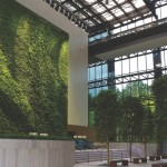 Living Wall Systems in Atlanta GA