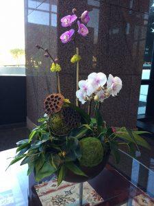 orchid arrangement on table